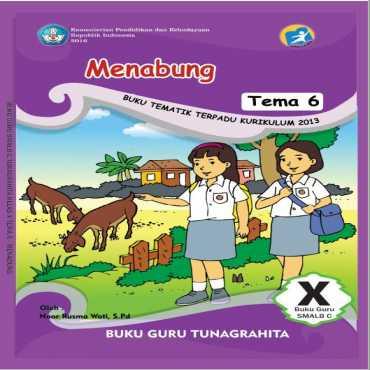 Buku Guru Tema 6 Menabung Tunagrahita Noor Rusma W